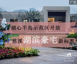 中海示范区盛大开放